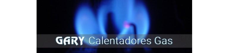 CALENTADORES GAS